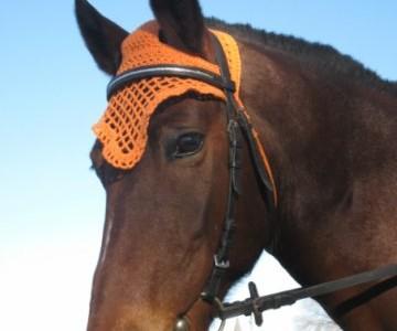 Вяжем шапочку для лошади крючком своими руками