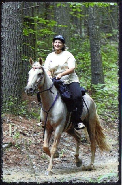 Виргинская горная лошадь на скаку, фото