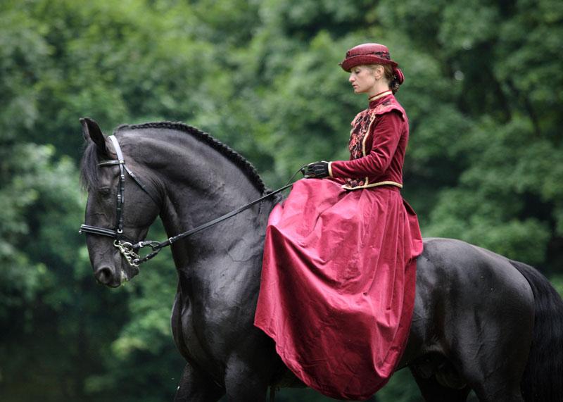 Кладрубская лошадь с наездницей, фото