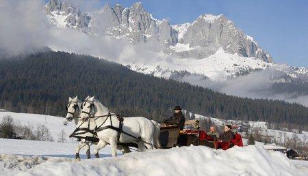 Липицианцы в альпах, фото