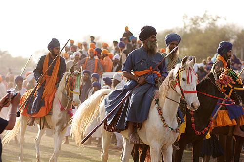 Лошади Белуджистанской породы с наездниками, фото