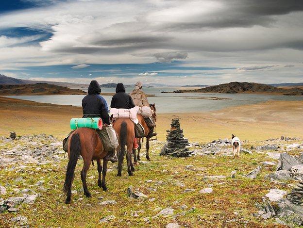 Монгольский пони в походе, фото