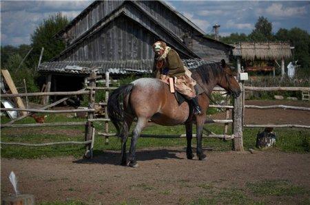 Фото лошадки гнедо-чалой масти