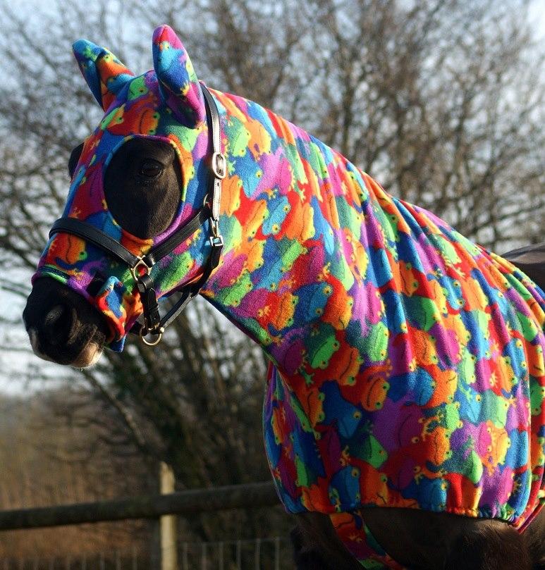 Сначала предназначался для защиты больных лошадей