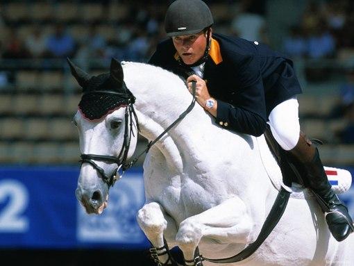 Вскоре лошадь привыкает  и впоследствии прыгает самостоятельно как пологается