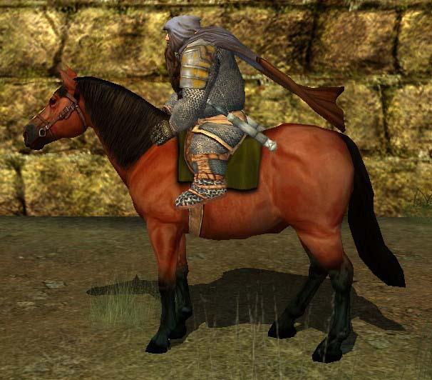 Ланда пони с наездником, фото