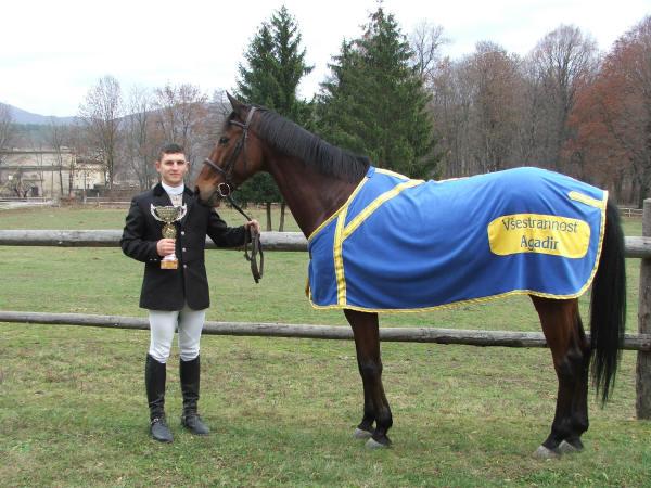 Лошадь-победительница породы гидран, фото