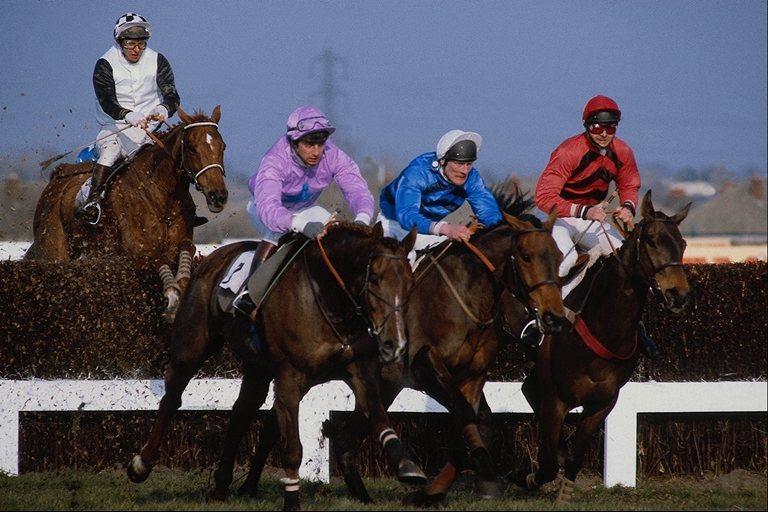 Тавдинская порода лошадей на соревнованиях, фото
