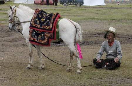 Тибетский пони с хозяином, фото