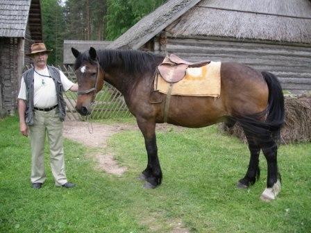 Эстонская лошадь с хозяином, фото