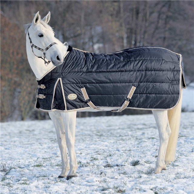 Зимняя попона способно согреть лошадь