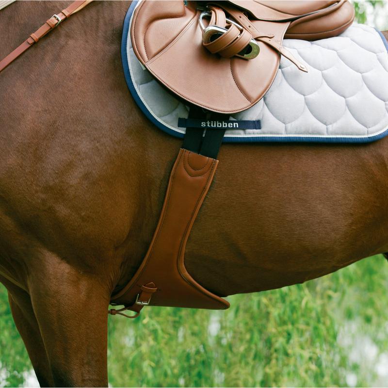 Фото лошади, где хорошо снизу видно подпргу, фиксирующую седло