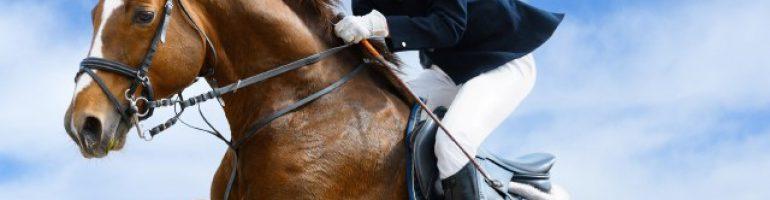 Шпора и хлыст — для дополнительного управления лошадью