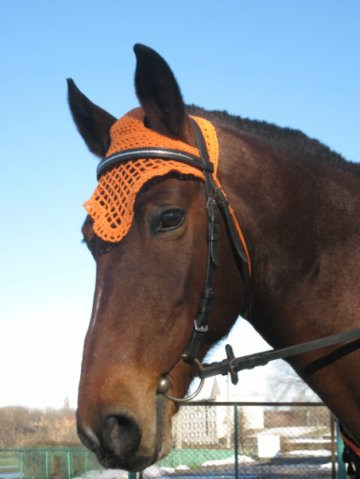 Схема ушки для лошади своими руками 1000