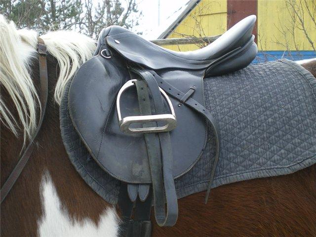 Вид седла может быть разный, главное чтоб он подходил лошади
