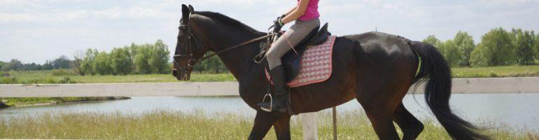 Обувь для лошади