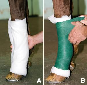 Ноги нужно бинтовать осторожно и со средней силой натяжки