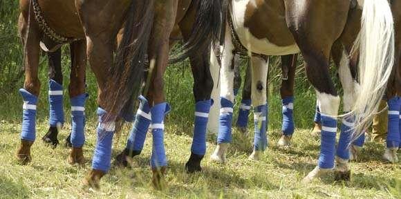 Защитить от травм - одна из причин бинтования ног