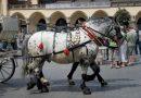 Как лучше сделать индивидуальный хомут для лошади