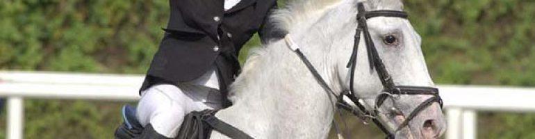 Изготовление функционального хлыста для лошади