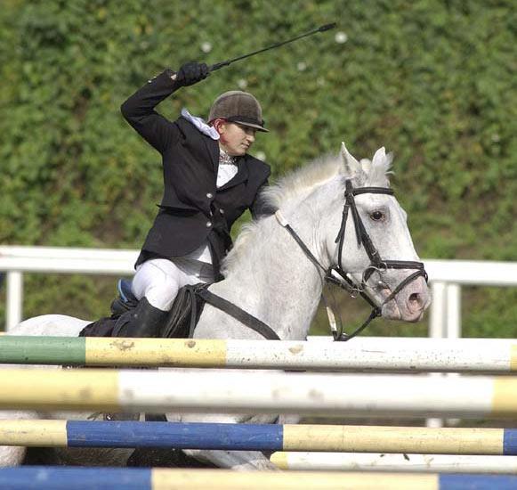 Как сделать хлыст для лошади фото 387