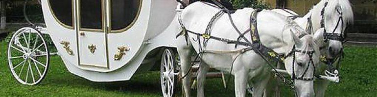 Изготовление роскошной кареты для лошади