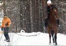 Изготовление плетеной веревки для лошади