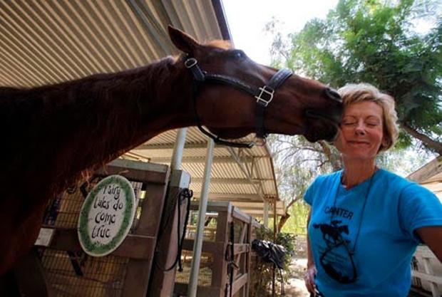 Лукас – самая умная лошадь в мире