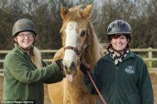 Одна из самых старых лошадей Англии