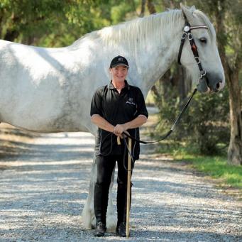 Породы самых длинных лошадей