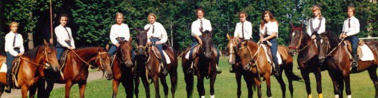 Что необходимо знать для обучения молодой лошади?