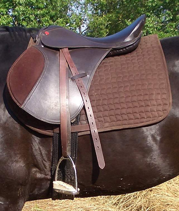 Как приручить лошадь к амуниции